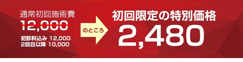 初回限定の特別価格2,480円(約83%OFF)